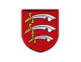 Essex Online Championship 2021 Open @ Lichess.org